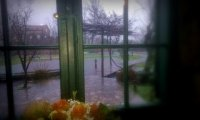 Rainy Day at Home